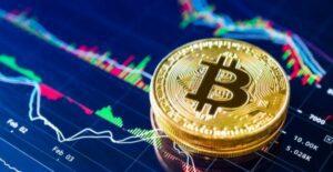 Bitcoin trader invest